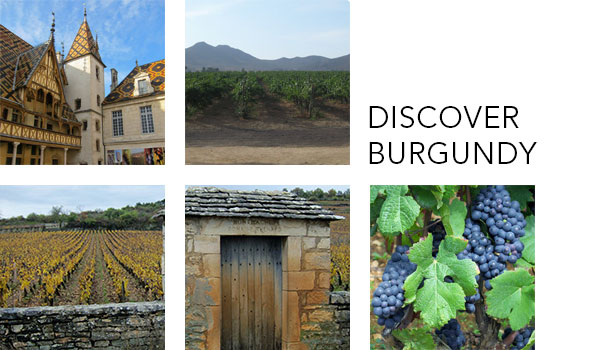 Discover Burgundy