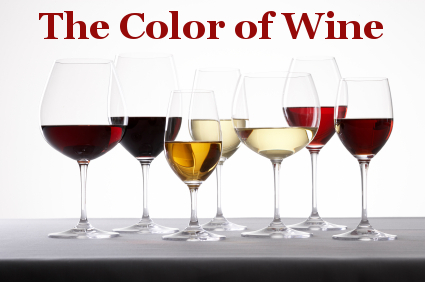 the color of wine tasting